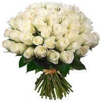 Новини > Вітаємо з Днем Вчителя! / 05.10.2012